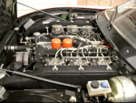 engine (click to enlarge)